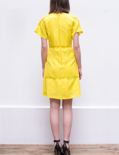 lemony dress_back2