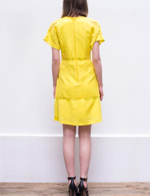 lemony dress_back2